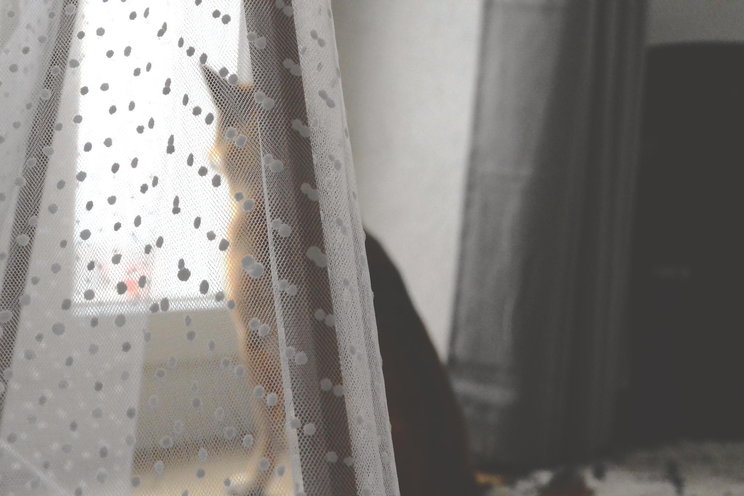 DIY: Un tipi pour mon chien