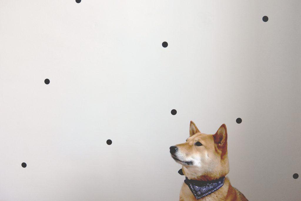Résultat final du mur – Ferm living dot stickers