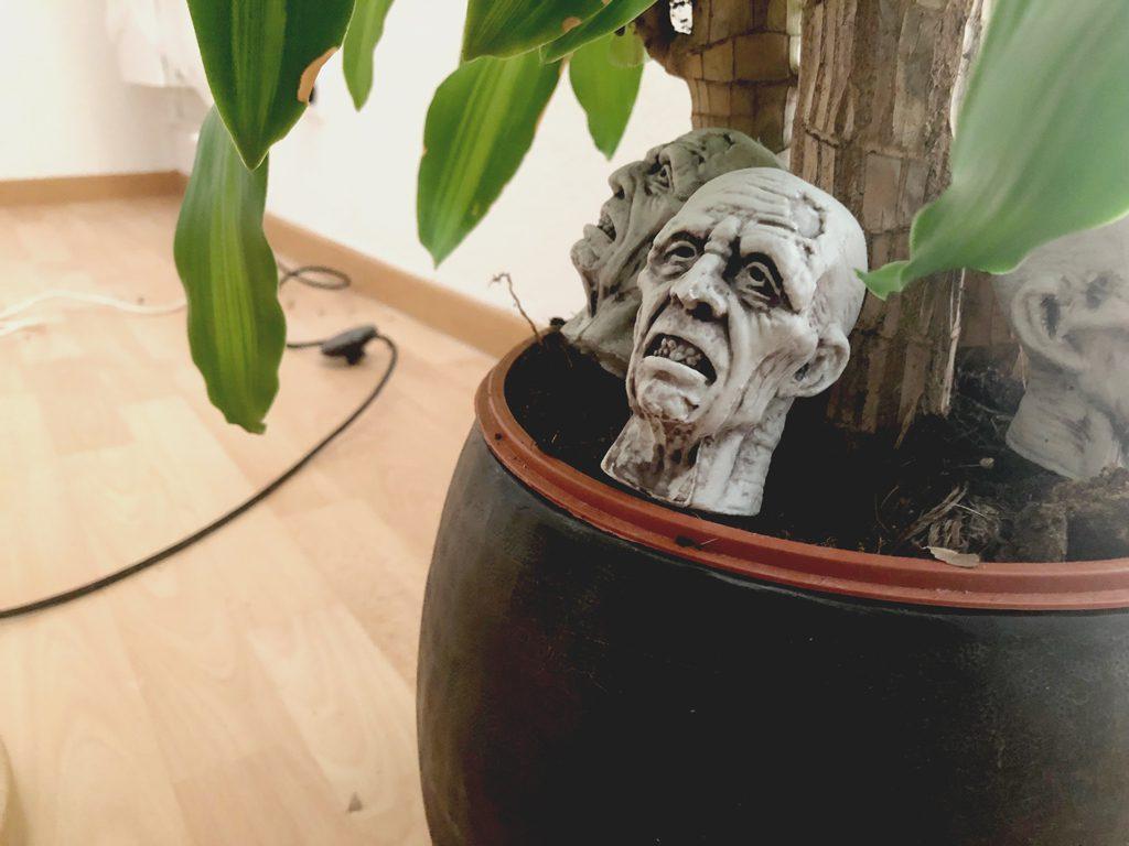Tête dans pot de plante