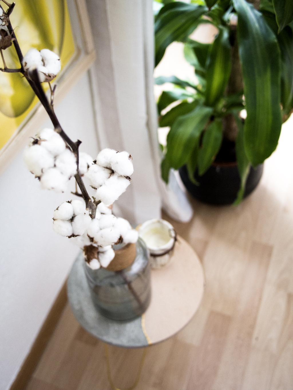 Vase Zara avec fleurs de cotons