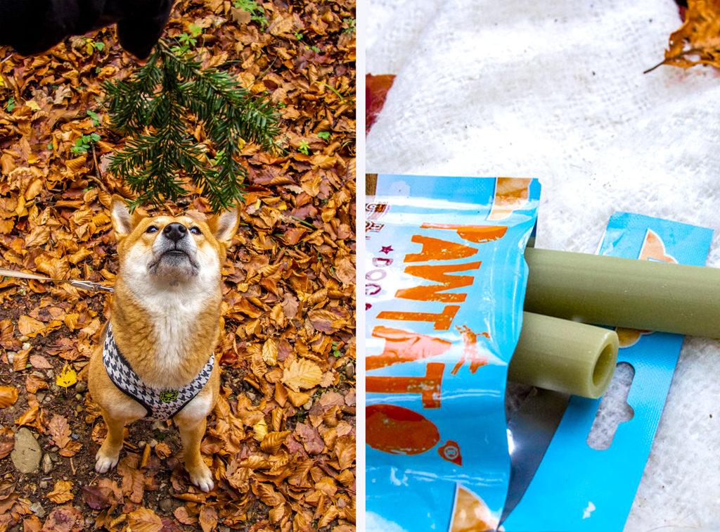 Benevo Pawtato vegan dog food